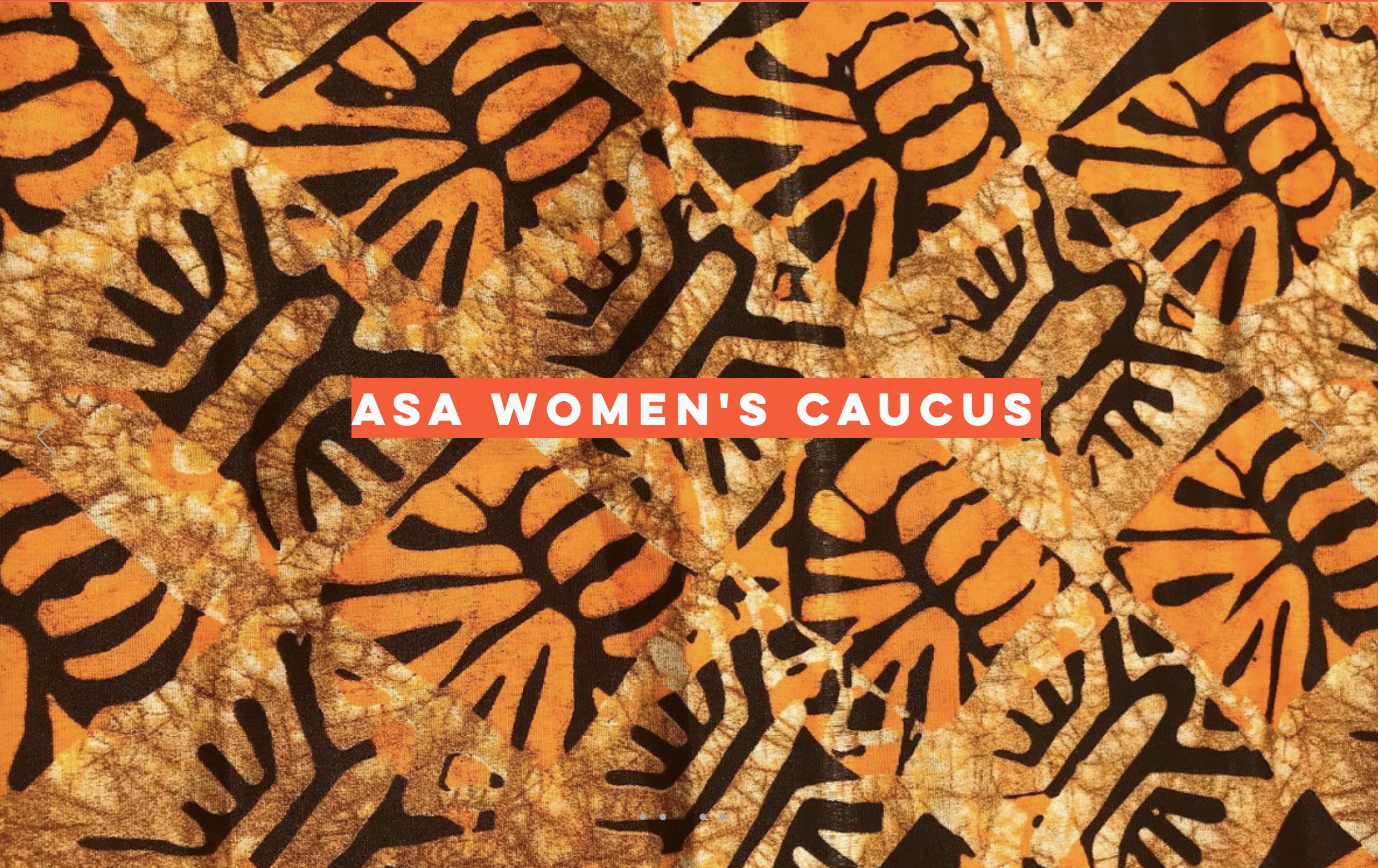African Studies Association announces book publication